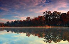 shoreline reflection at sunrise (Marc Crumpler (Ilikethenight)) Tags: morning trees usa water clouds sunrise canon reflections landscape fallcolor lakes southcarolina goosecreek visualart tamron1750 fineartphotos 40d citrit canon40d photosexplore rubyphotographer