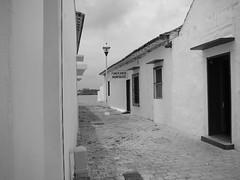 Archivo Tlacotalpan - Agosto 2008 (245)