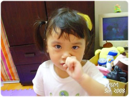 2008柚子頭-05
