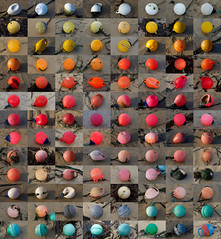 Buoys, buoys, buoys (Alex Bamford) Tags: collage cornwall harbour montage buoys stives floats moorings buoyant alexbamford thebigbambooly buoyantspotlight wwwalexbamfordcom