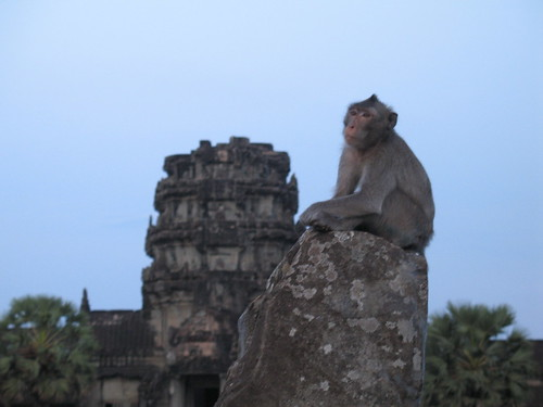 Lord Monkey of Angkor (and the weight on his shoulders)