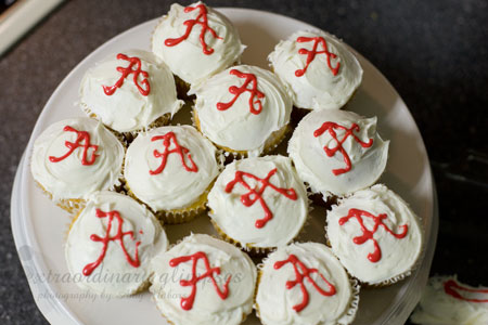 Alabama-Cake_Jan012009_0003web