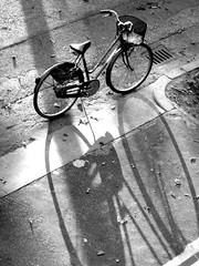 La bicicletta (just DM) Tags: shadow bw bicycle canon ombra bn a80 blackdiamond bicicletta blackwhitephotos blackwhiteaward platinumheartaward goldstaraward thebestofcengizsqueezeme2groups