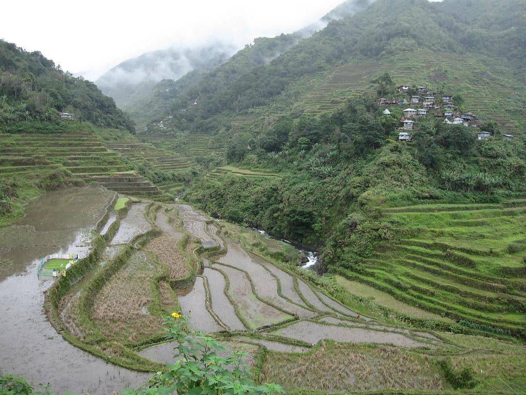 フィリピン・コルディリェーラの棚田群の画像 p1_37