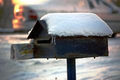 Des nouvelles fraches... (BrigitteChanson) Tags: winter newspaper hiver journal blad invierno neige inverno lettres bote gazette giornale