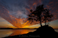 Fire in the Sky (John Cothron) Tags: winter light sunset sky cloud sun lake cold color reflection tree nature water silhouette canon georgia landscape outdoor scenic r
