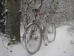 Monday Snow Bike