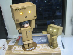 Medium and Small Danboard