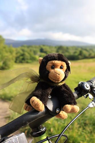George on the kickbike
