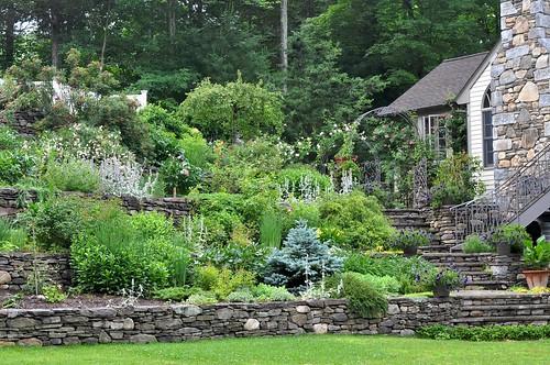 Mom's gardens