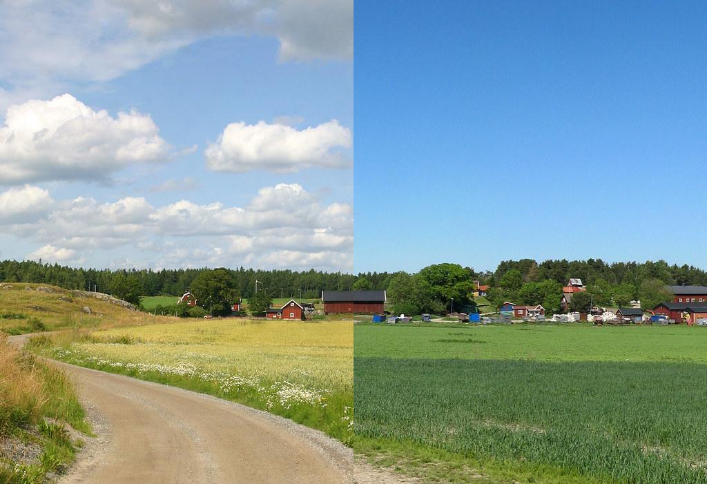 Summer vs. Summer