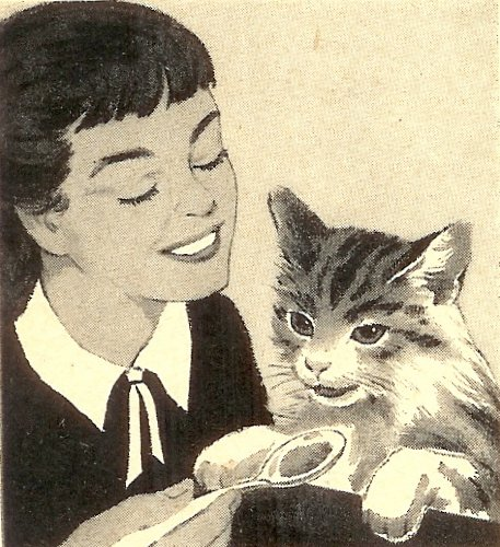 Tabby detail 1958 (by senses working overtime)