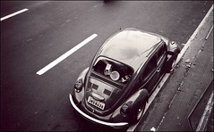 manaus beetle (chirgy) Tags: road brazil bw car brasil vw 35mm volkswagen fuji beetle scan lookdown trips neopan manaus amazonas whitelines cn400 autaut boiledalive pentaxespio120mi