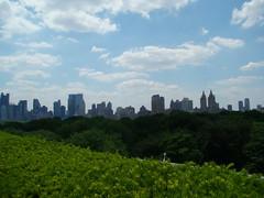 大都會-頂樓的空中花園
