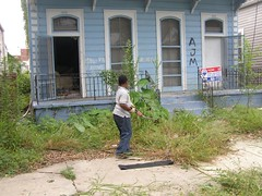 3016-18 Bienville Cleanup