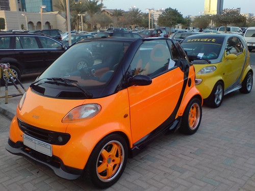 Smart Cars, Stupid Owners