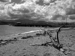 Pier n Beach (abstract_effects) Tags: sea sky mountains wales clouds canon pier blackwhite july driftwood shore beaumaris 2008 wfc anglesey northwales g9 gogleddcymru abstracteffects