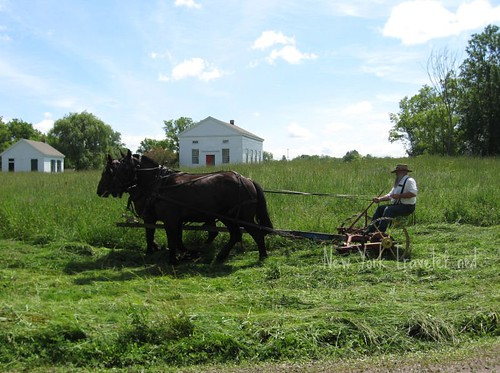 Farming Mowing Meadow