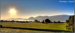 Diepoldsau (Lars Tinner) Tags: sky sun geotagged schweiz switzerland nebel himmel ostschweiz sg rheintal sonne rhein diepoldsau wwwtinnersg httpwwwtinnersg tinnersg 077kmtodiepoldsauinswitzerland geo:lon=9643583 geo:lat=47382861