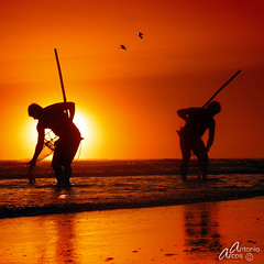 ChoreographyByTheSea. (AntonioArcos aka fotonstudio) Tags: sunset espaa sun beach backlight andaluca spain fishermen huelva silhouettes playa textures siluetas texturas pescadores almonte playita mazagn xoxoxoxoxo coquineros aplusphoto fotonstudio cuestamaneli memoriesbook antonioarclos
