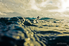 dune (SARA LEE) Tags: texture water hawaii surf underwater dof bokeh surfer dune earlymorning surfing outoffocus housing hilo sarahlee honolii ewamarine legothenego vivantvie