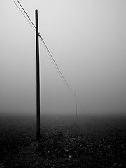 """Hello?""- ""Hi... recognize my voice? Who am I?"" (_Blaster_) Tags: bw italy fog italia fuji ground f30 cables finepix poles telephonepoles pali nebbia salento puglia biancoenero blaster terreno cavi grottaglie fujif30 aplusphoto goldenvisions palitelefonici"