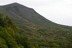 緑岳の沢の紅葉