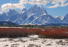 Red & White Winter in the Tetons (Jeff Clow) Tags: winter landscape afternoon tetons jpeg grandtetonnationalpark 3xp fdrtools abigfave impressedbeauty