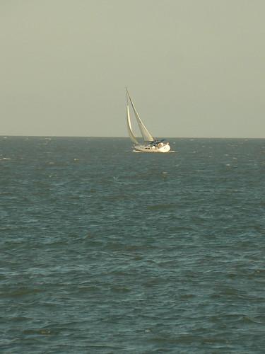 sailboat corpuschristitexas panasonicdmcfz7 10millionphotos 200000000stagelovers