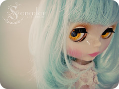 [ 15 / 365 ] : amber eyes
