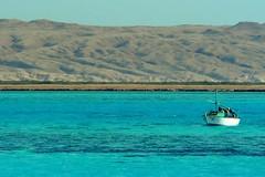 fishing (wrrroah) Tags: blue sea water boat fishing holidays egypt vivid colourful reef fishingboat hurghada theredsea myfavourite lumixtz1 onlyyourbestshots colorsinourworld