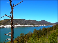 Navajo Lake, Utah (Tracey Tilson Photography) Tags: 2005 travel mountain lake snow nature forest utah ut shoreline alpine shore aspen alpinelake picnik pristine navajolake cedarcity cascadefalls duckcreek dixienationalforest ec