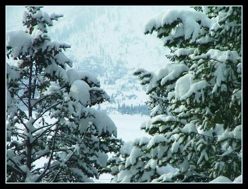 Grand Tetons December 2008 4