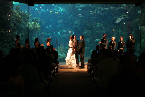 CheapOutdoorWeddingInLongIslandNewYork Perfect Wedding Ideas