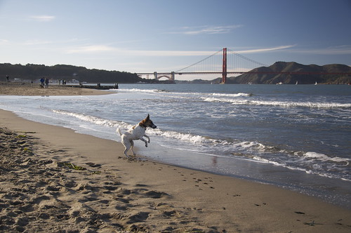 The first thing you must do when arriving is run out onto the sand and dance in front of the Golden Gate Bridge.