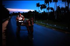 caballo (gianluca_cozzolino) Tags: world black colour 35mm caballo reflex nikon emotion havana cuba dia trinidad emotions cavallo nikonfm2 fm2 diapositiva reportage lahabana twr analogic diapo gianluca cozzolino nikonblack gianlucacozzolino nikonanalogic