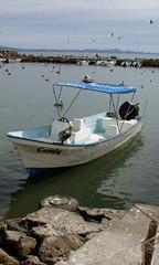 PC310106.JPG (Just a Pilgrim) Tags: cruise mexico loreto 0812