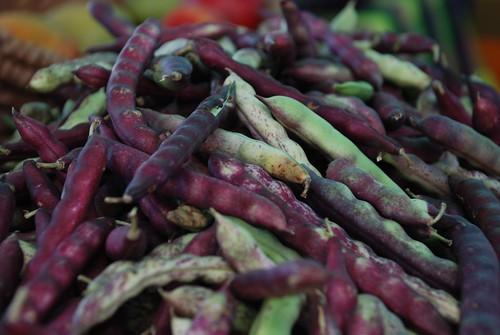 beans at pinecrest market
