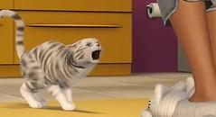 Sims 3 Pets 16
