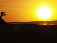 P1210970 (LISA DYKE) Tags: vacation sun beach beautiful island sand antigua caribbean westindies antiguabarbuda lisadyke