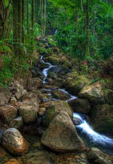 River to Paradise (davidlepnyc) Tags: trees fab nature hawaii waterfall rocks paradise tripod timeexposure explore jungle bigisland hilo botanicalgardens hdr naturesfinest photomatix intrestingness 365days mywinners canon400d betterthangood goldstaraward