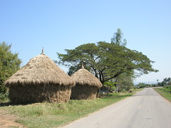 Straw huts along the road