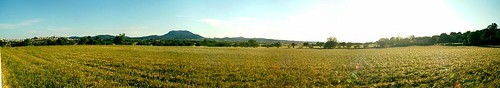 Panorama prop de Montuiri