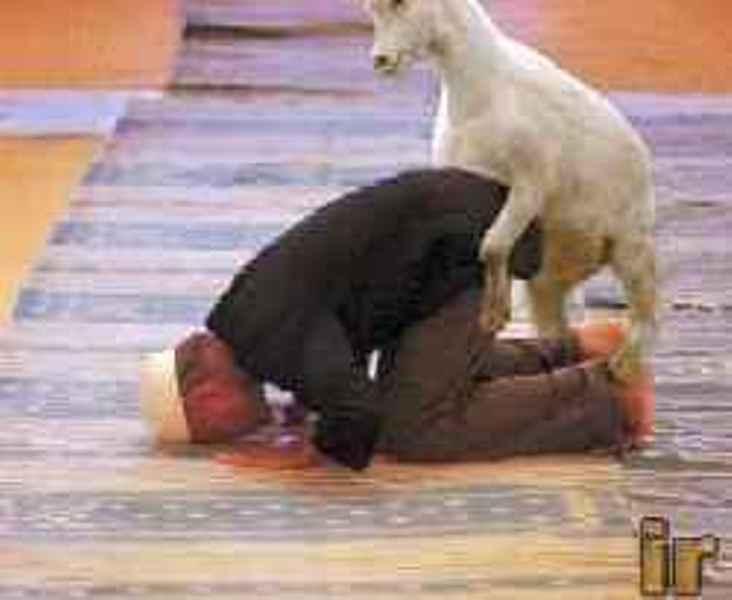 moslim sex
