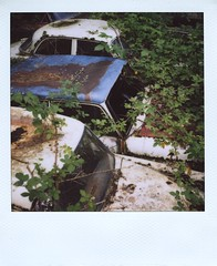 3 (Polaroid) (So gesehen.) Tags: wood old nature car polaroid schweiz switzerland automobile decay lofi scanned polaroidlandcamera autofriedhof autograveyard cardump polaroid600film kantonbern polaroid2000 kaufdorf sx70moddedfor600 historischerautofriedhof fehicle