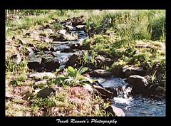 The Old Stream! (TrackRunner09) Tags: mountains water grass photoshop high rocks stream pennsylvania splash hdr flowingwater pocanos aplusphoto beyondphotos hdrandphotoshopphotography trackrunner09 trackrunnersphotography