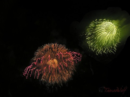 FireWorks Bay City 08 (by TamedWolf)