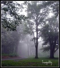 (cscott_va.) Tags: virginia scene picnik skylinedrive shenandoahnationalpark blueribbonwinner impressedbeauty betterthangood life~asiseeit