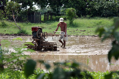 Morton (JP Dela Paz) Tags: farm farmer handtractor