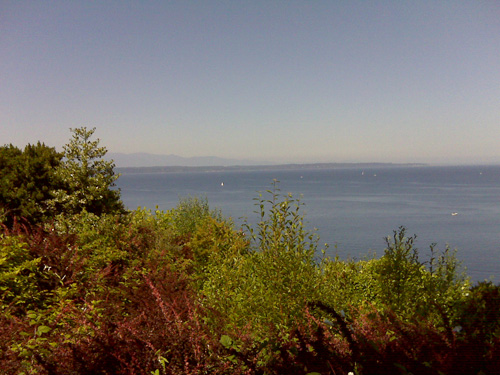 edmonds view